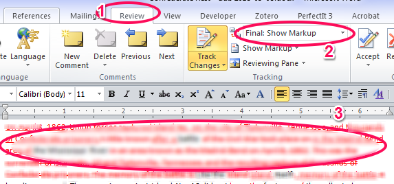 A screenshot of the Review tab and Display for Review setting.